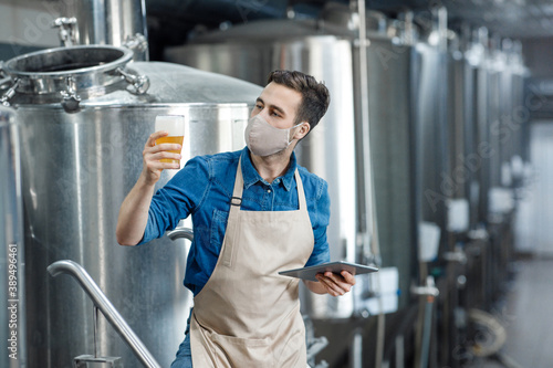 Professional brewer works in modern brewery and examining quality of ale Wallpaper Mural