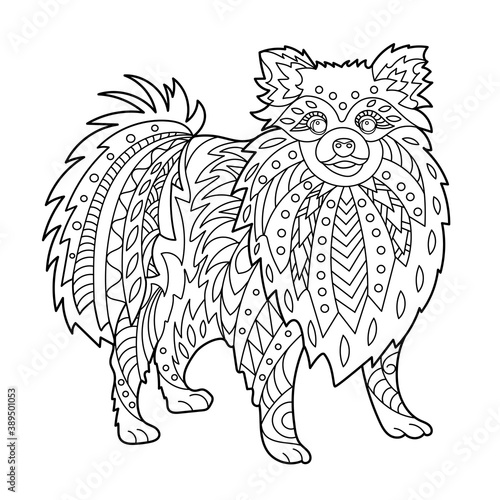 Fototapeta Toy dog coloring page for adult and children