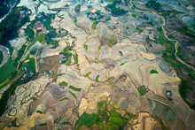 Aerial View Of Rice Terraces I...