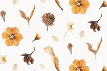 Natural Dried Flower Wallpaper...