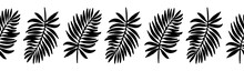 Seamless Pattern. Vector Horizontal Border For Design And Decoration. Vector Set Of Black Silhouettes Of Tropical Leaves. Horizontal Frieze Of Exotic Palm Leaves Isolated On A White Background.
