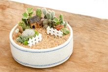 Stone House Miniature Model With Cactus And Succulent Terrarium Houseplant Fairy Garden In White Ceramic Planter On Wood Table Top Background