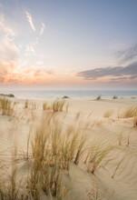Sand Dunes In Kaliningrad. Natural Background. Sunrise.