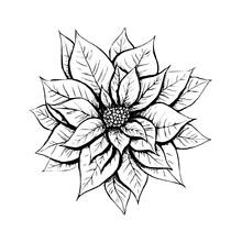 Hand Drawn Line Black Sketch I...