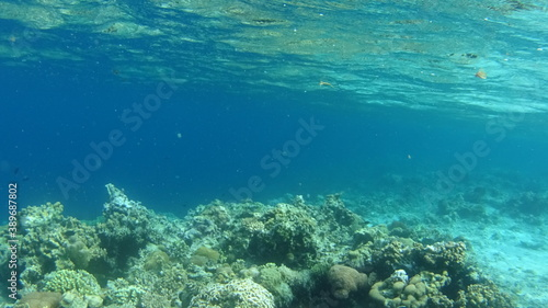 Fotografering フィリピン パラワン コロン島
