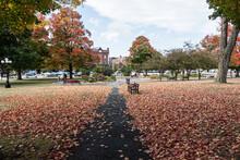 Taylor Park St Albans Vermont