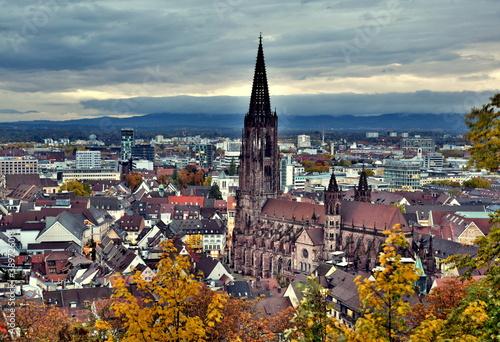 Blick aufs Freiburger Münster im Herbst Canvas Print