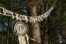 Dreamcatcher Made Of Yarn. Handmade Object Placed Between The Trees Of A Field.