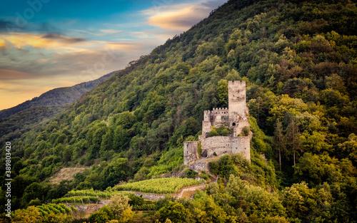 Autumn vineyards under old ruin of Hinterhaus castle in Spitz Canvas