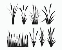 Cattail Symbol Vector Illustration