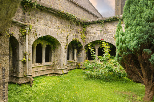 View of the cloister of the Augustinian Abbey near the village of Adare in Ireland Canvas