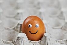 Funny Easter Chicken Egg Face ...