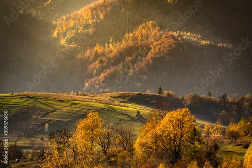 Landscape of Autumn Carpathian Mountains Wallpaper Mural