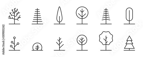 Fotografie, Obraz Trees linear icons. Vector thin line tree collection.