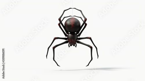hanging black spider Canvas Print