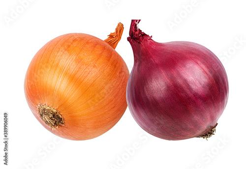 onion  isolated on white background Fotobehang