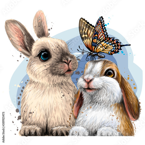 Little rabbits with a butterfly Canvas