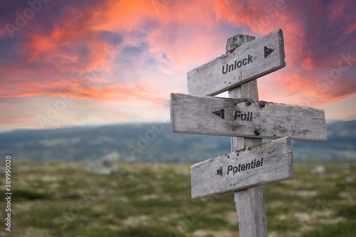 Fototapeta unlock full potential text engraved in wooden signpost outdoors in nature during sunset and pink skies. obraz