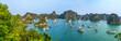 Die unbewohnten Inseln und Felsen der Halong-Bucht im Golf von Tonkin in Vietnam, Panorama.