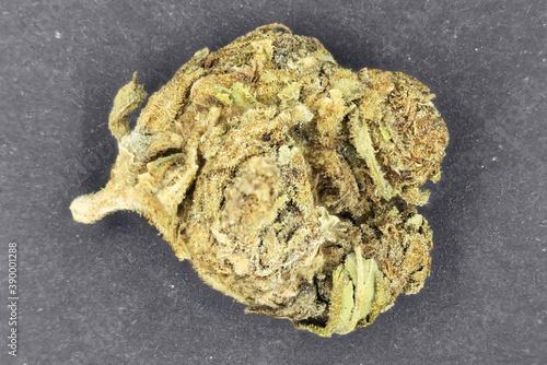 Dried bud of medicinal marijuana plant Canvas-taulu