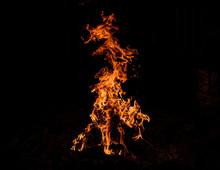 Fire Dragon Roaring It's Head