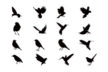 Flying Bird Silhouette Icon Ve...