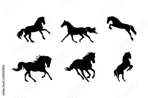 Fototapeta horse silhouette icon vector set for logo