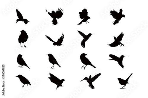 Obraz na plátně flying bird silhouette icon vector set for logo