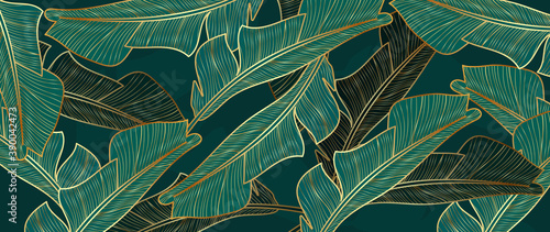 Fototapeta Gold and luxury banana leaves background vector. Floral pattern with golden tropical palm, coconut tree, split-leaf Philodendron plant ,Jungle plants line art on white background. obraz