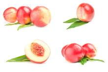 Collection Of Juicy Ripe Peaches
