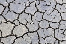 Cracked Soil On The Former Bot...