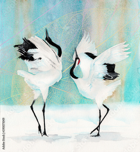 Fototapeta premium Watercolor picture of a two red-crowned japanese cranes dancing under the blue sky with a patterned background