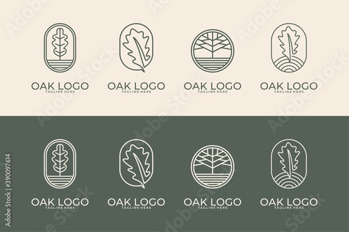 Tablou Canvas oak with line art style logo design collection