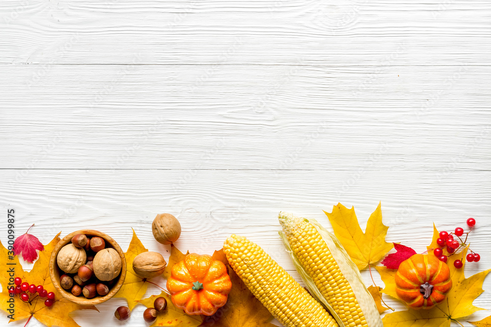 Fototapeta Autumn top view background with pumpkins corn and nuts