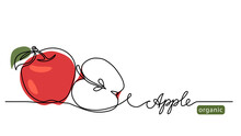 Red Apple Vector Illustration. One Continuous Line Drawing Art Illustration With Lettering Organic Apple.