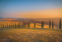 Summer Morning With Beautiful Curved Road And Cypress Trees Rolling Over The Hills. Travel Destination Tuscany, Italy