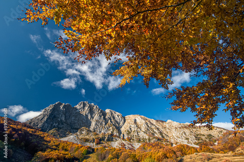 amazing fall colors in the plateau of Campocatino, Apuan Alps of Tuscany Wallpaper Mural