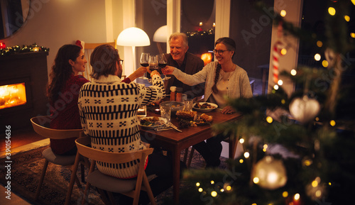 Fotografering European family toasting wine at Christmas dinner
