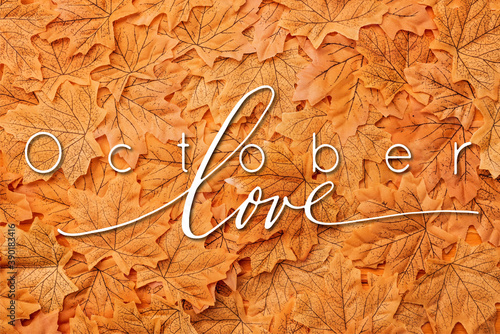 Foto top view of golden autumnal leaves near october love lettering