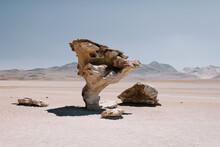 The Desert Of Salvador Dali