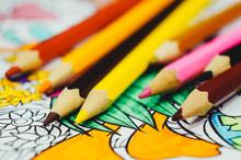 Multicolored Pencils And Color...