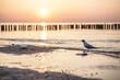 Lądowanie nad Bałtykiem
