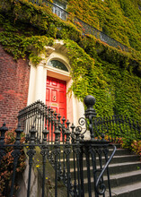 Entrance To An Ivy Covered Bui...