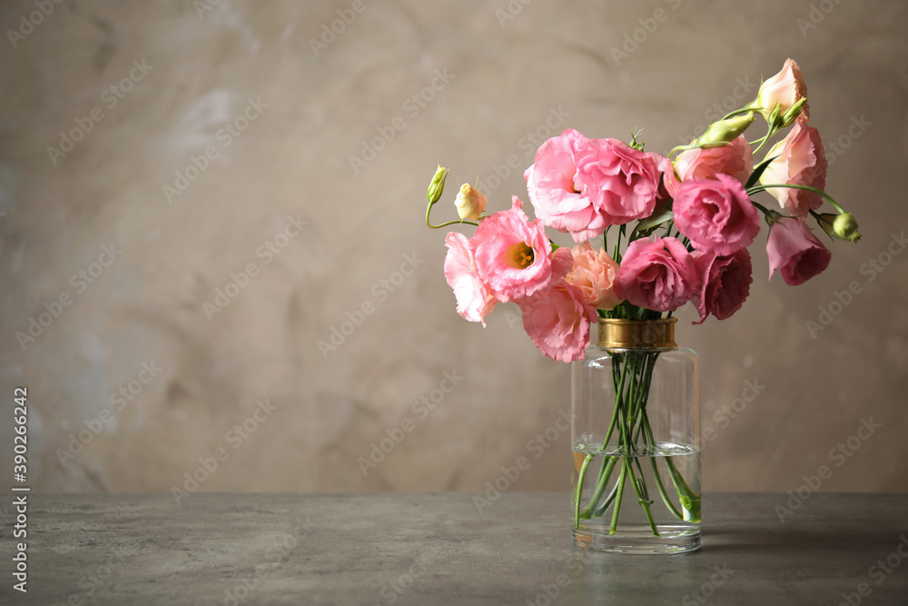 Fototapeta Beautiful pink Eustoma flowers in vase on table against grey background. Space for text