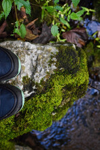Hiking On Mossy Ground, Old Stone Fort Archaeological Park, TN