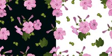 Vector Floral Seamless Pattern, Bouquet Of Pink Petunia Flowers, On A White And Dark Background, Flower Buds With Green Leaves In A Realistic Stylefor Fabric, Textile Design,