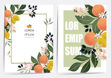 Vector Illustration Of A Beautiful Floral Frame Set With Fruits. Design For Cards, Party Invitation, Print, Frame Clip Art And Business Advertisement And Promotion