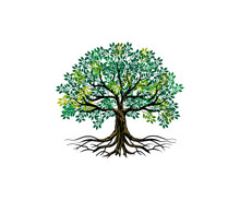 Tree And Roots Vector, Tree With Round Shape