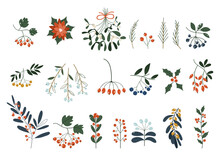 Set Of Plants With Flowers, Spruce Branches, Leaves And Berries. Christmas Decorations. Holly, Spruce, Red Berries. Hand Drawn Design Elements. Floral Design Elements For Christmas And New Years.