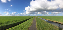 Panorama From A Path Through G...